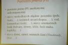 http://ccv.volny-cas.cz/uploads/obrazky/atv-pom.-jmena/250704121026sam1426.jpg