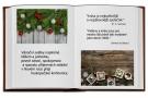 http://ccv.volny-cas.cz/uploads/obrazky/vystava-vanocni-cas-2013/214412181012pf2019.jpg